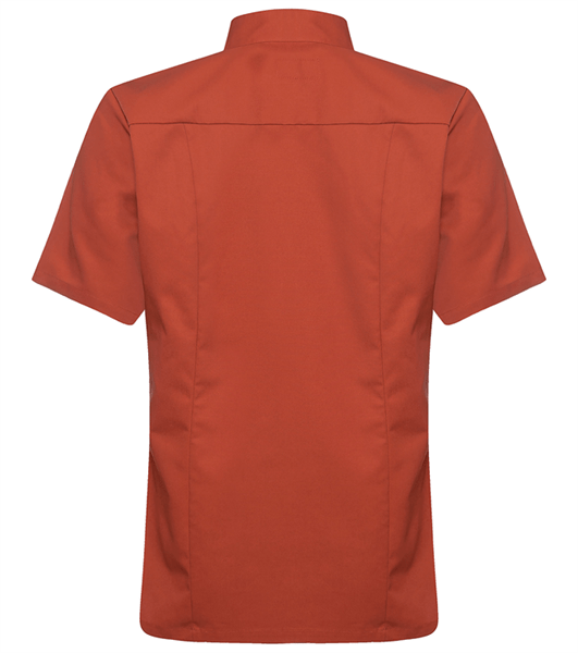 Kokinpaita 1017-201 miesten ruosteenpunainen lyhythihainen takaa